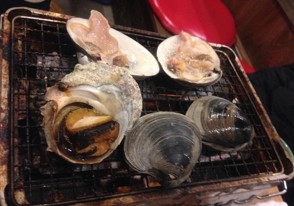 y10白蛤