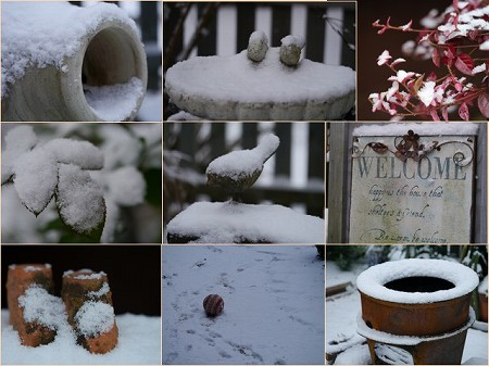160120雪景色 (1)
