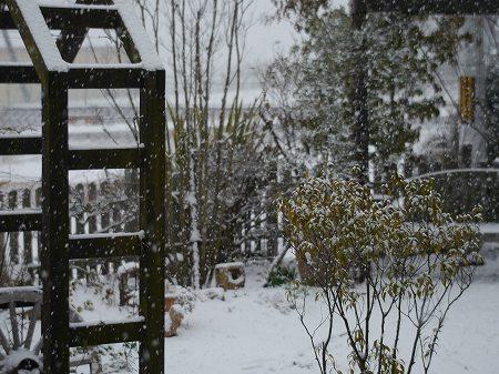 160120雪景色 (2)