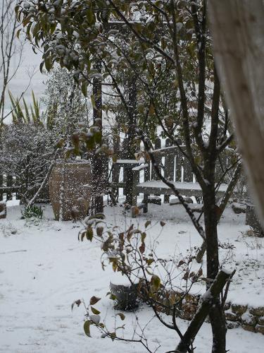 160120雪景色 (10)
