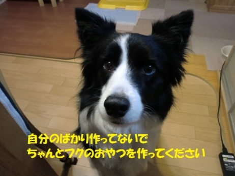 CIMG7416_2016010520315292a.jpg