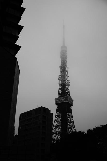 駅前から見える東京タワー