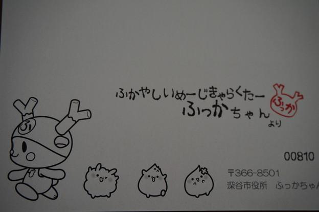 ふっかちゃん年賀状2016~表~