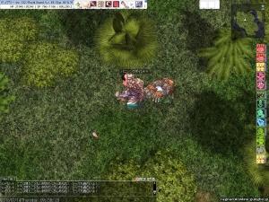 screenFrigg812.jpg