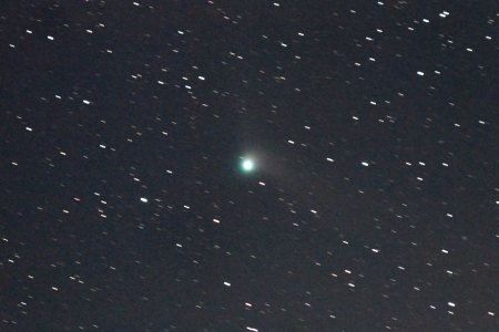 20160103-Catalina-zoom-12c-.jpg