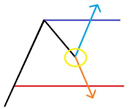 ランダムウォーク理論1
