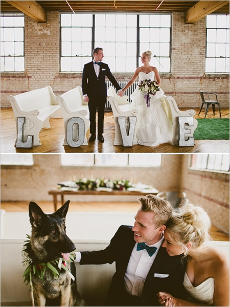weddingceremonydecoranddog.jpg