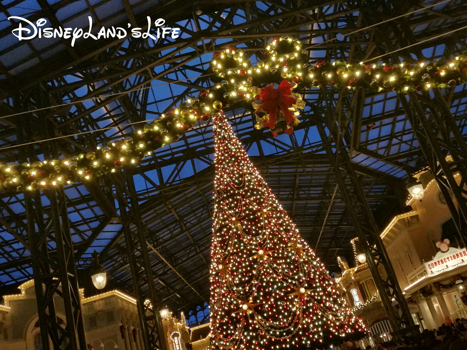 Christmas2015_037.jpg