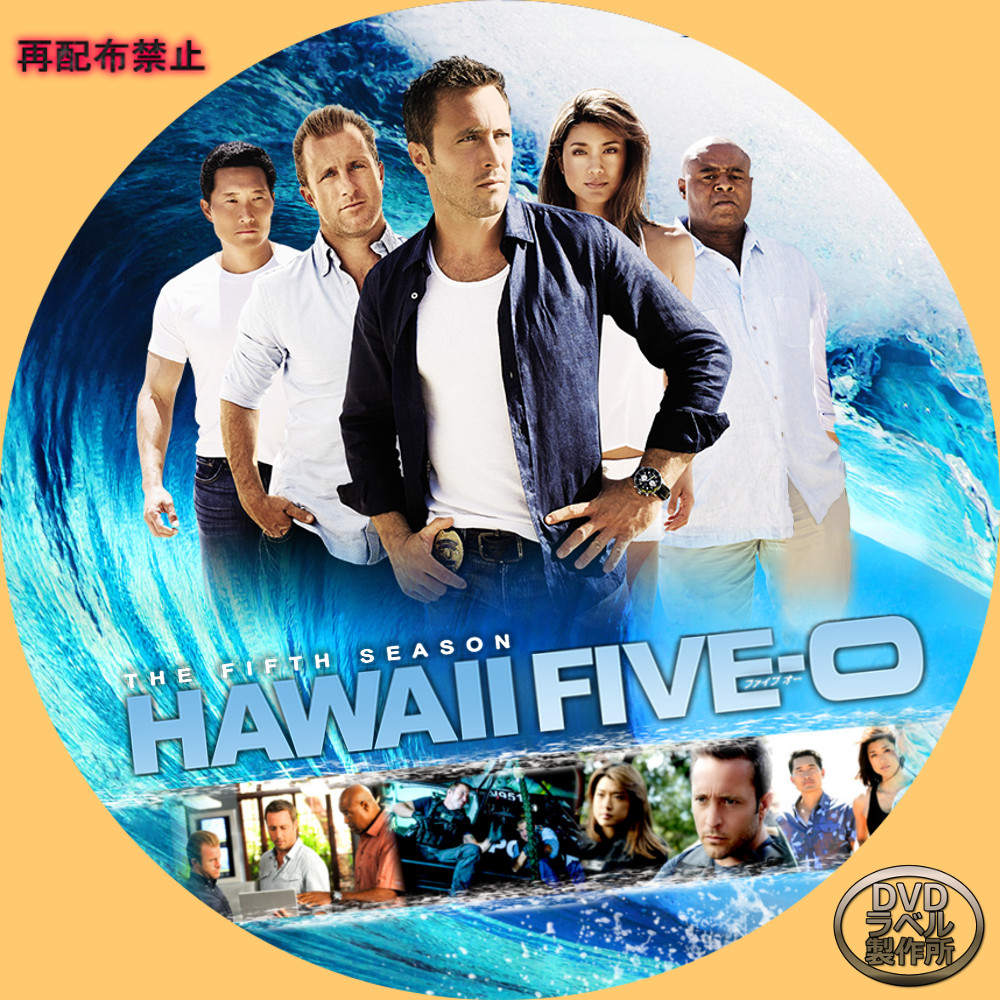 Hawaii Five O Verpasst