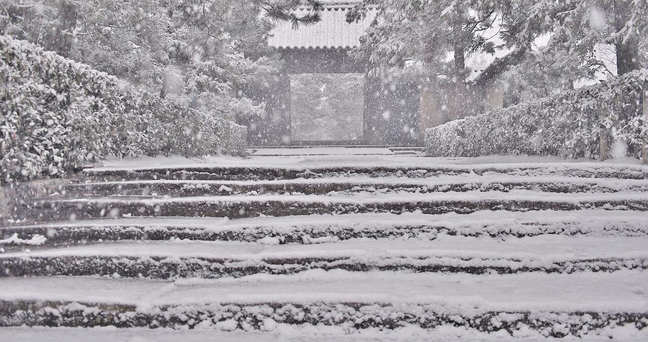 X059大徳寺