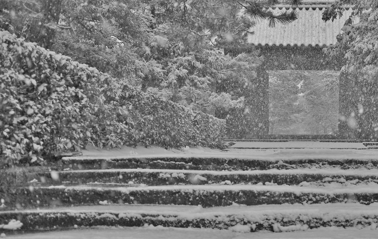 X061大徳寺