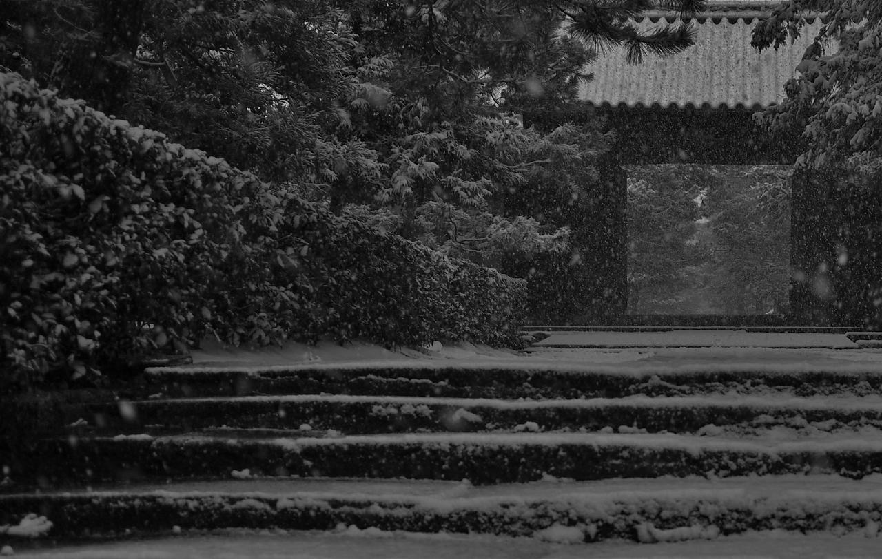 X061a大徳寺
