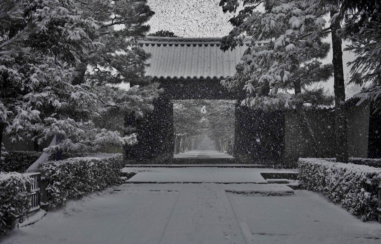 X063大徳寺