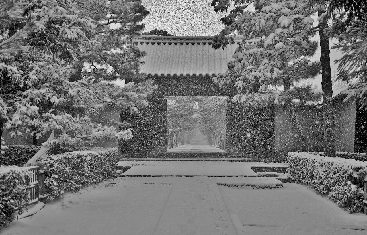 X063a大徳寺