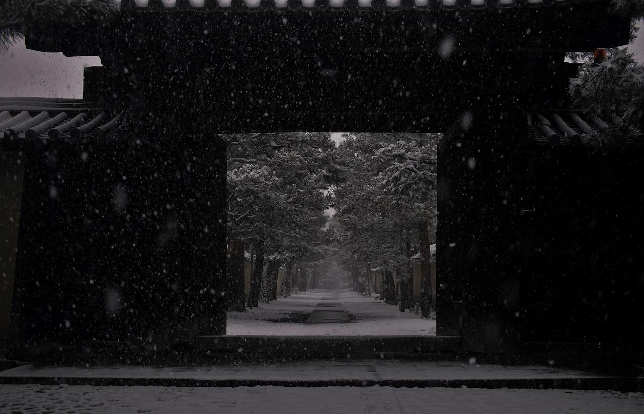 X066大徳寺