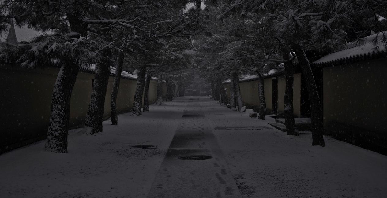X069大徳寺