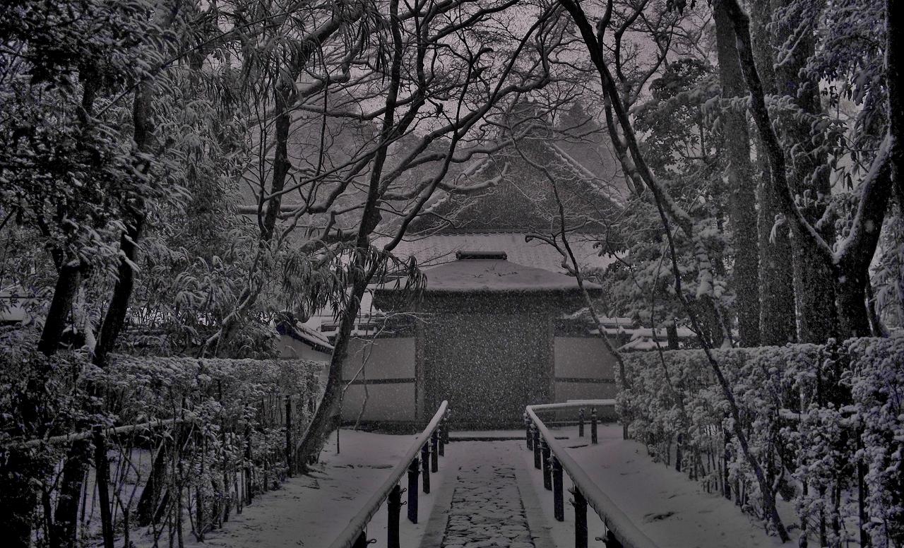 X044a高桐院