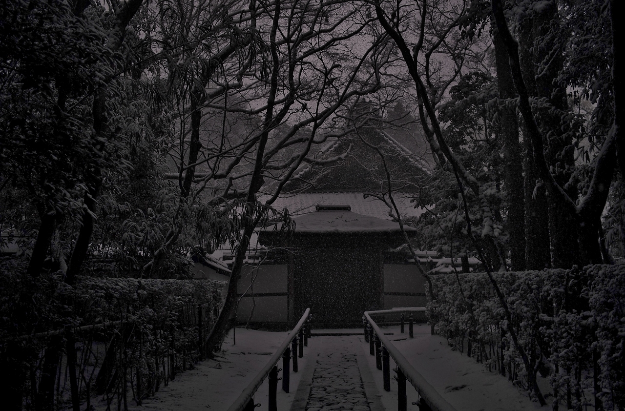 X044高桐院