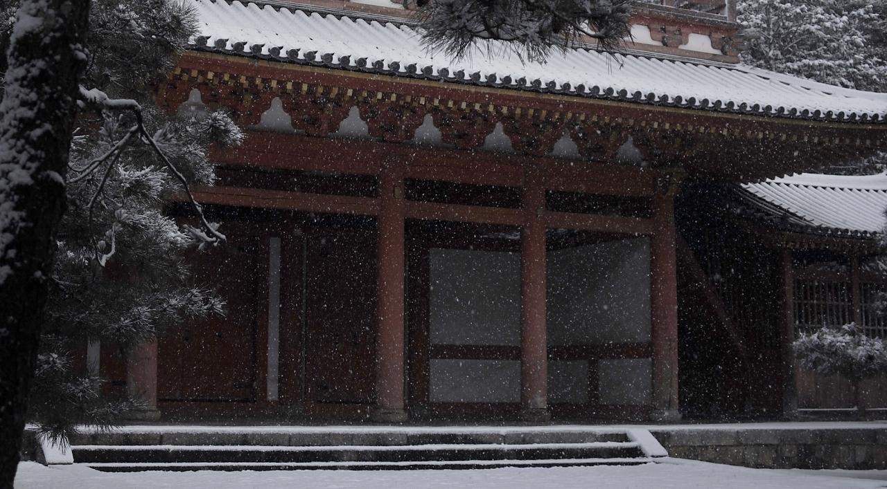 X071大徳寺