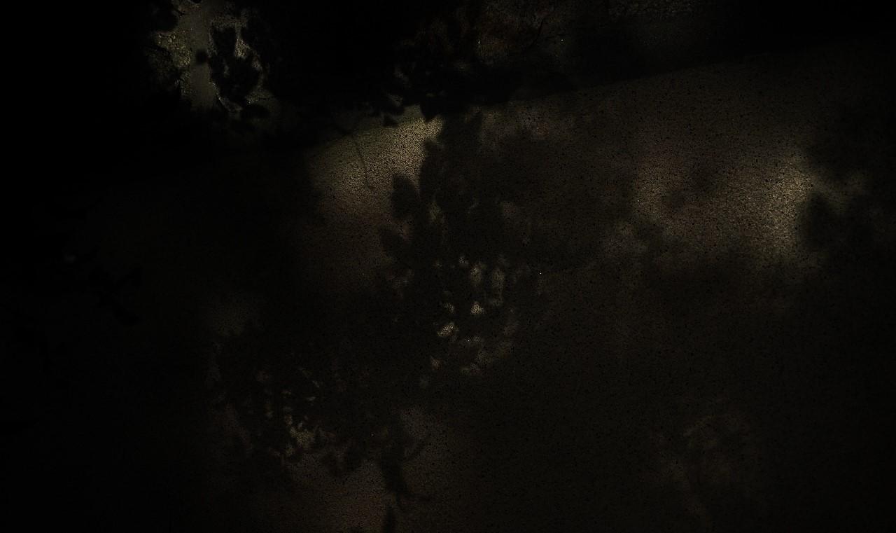 X014大徳寺土塀