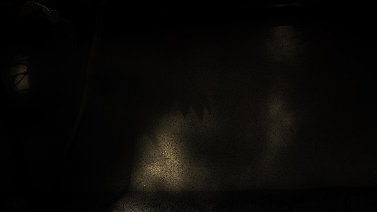 X018a大徳寺土塀