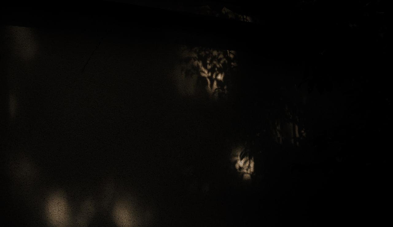 X025大徳寺土塀