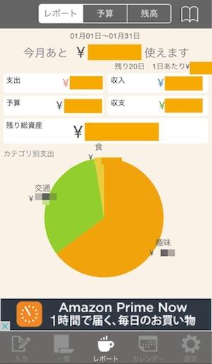 おとなのおこづかい帳 - 円グラフ