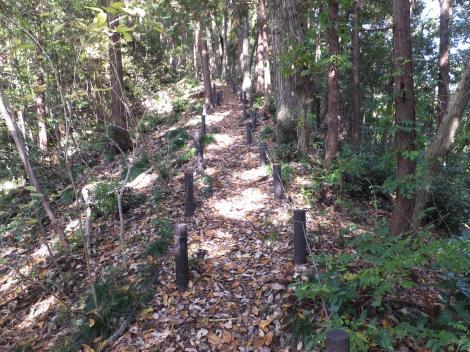 段木入の丘登山道