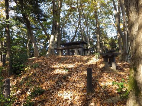 段木入の丘