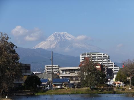 中郷温水池より富士山を望む