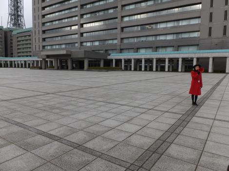 市ヶ谷防衛省庁舎A棟前儀仗広場