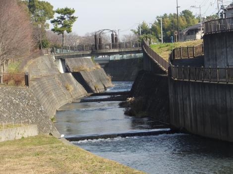 貫抜川・海老名運動公園付近