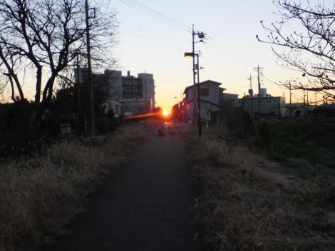 2016横浜水道みちの初日の出