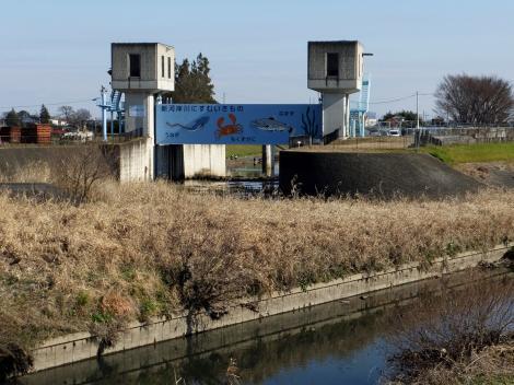 新河岸川放水路入口・渋井水門