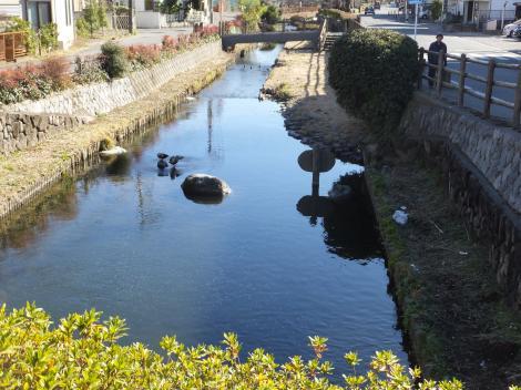 三沢川伏越より二ケ領用水下流を望む
