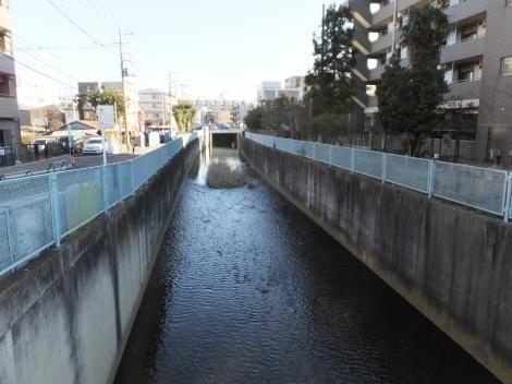 新川橋より二ケ領用水路下流を望む