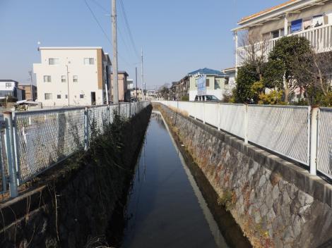 三沢川橋より旧三沢川上流を望む
