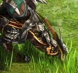 DragonsProphet_20151020_233527.jpg