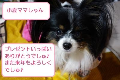 お礼 (640x427)