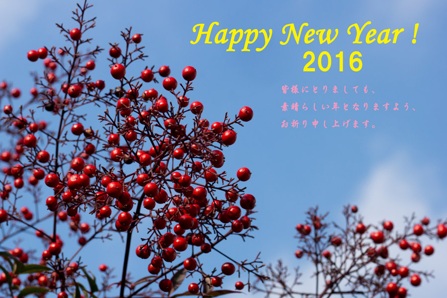 20160101_happy new year_1