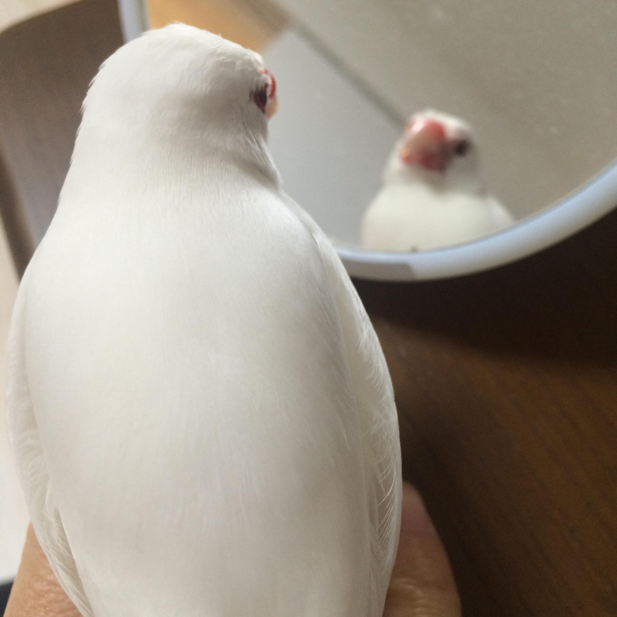 osooki4.jpg