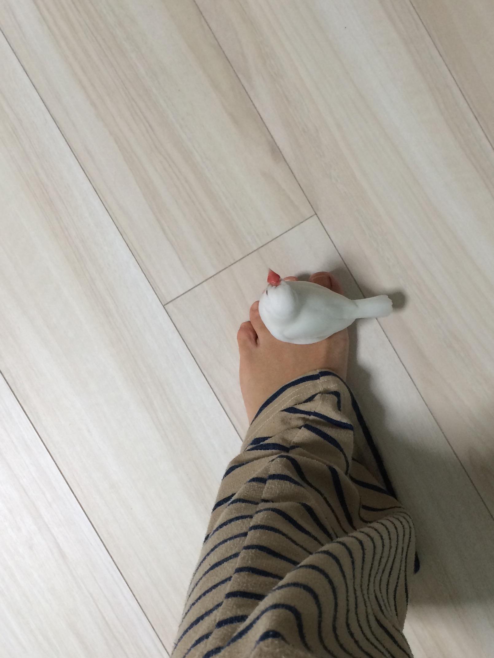 yukute4.jpg