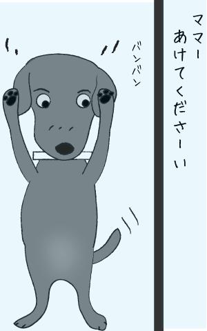 窓をたたく犬