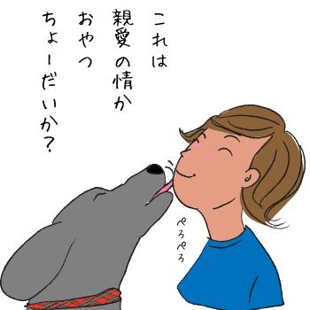 顔をなめる犬