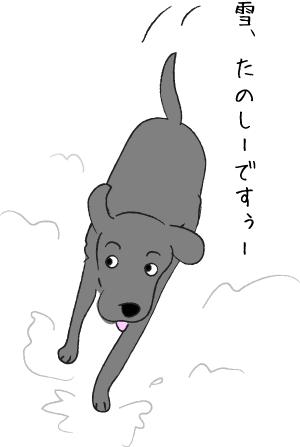 雪で喜ぶ犬