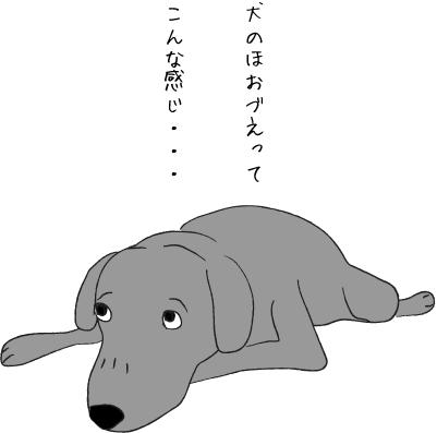 ほおづえをつく犬