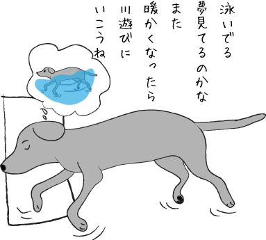 夢見る犬01