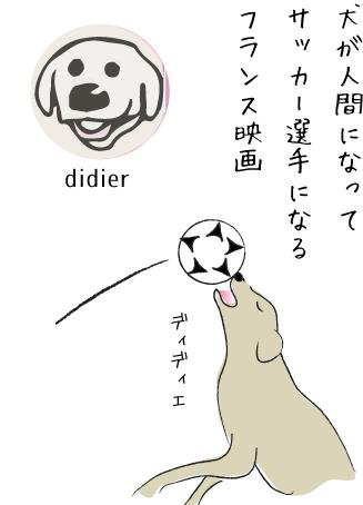サーカーをする犬