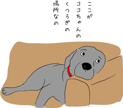 ソファに寝る犬