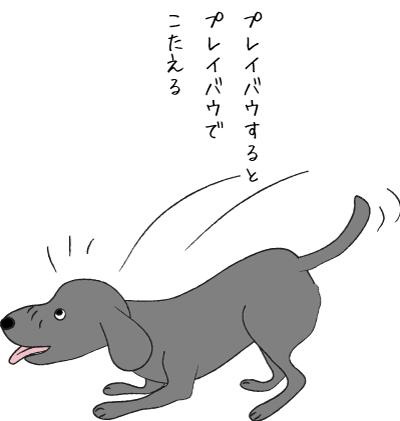 ドッグバウする犬